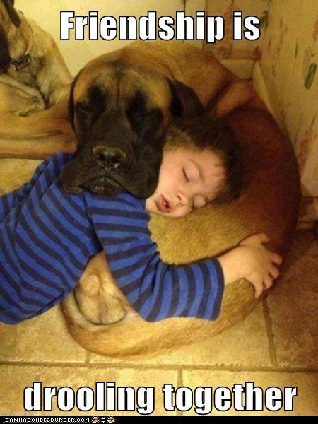 friendship nap droll funny - 7551457792