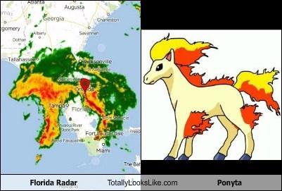 Pokémon florida totally looks like funny - 7552325376