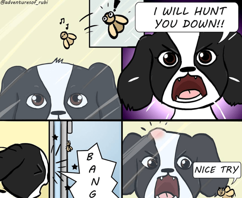 dogs funny dogs web comics - 7552517