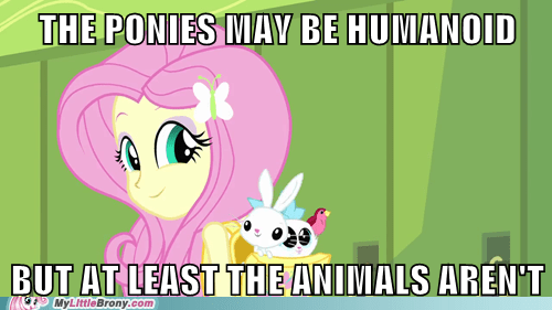 equestria girls fluttershy animals - 7552955136