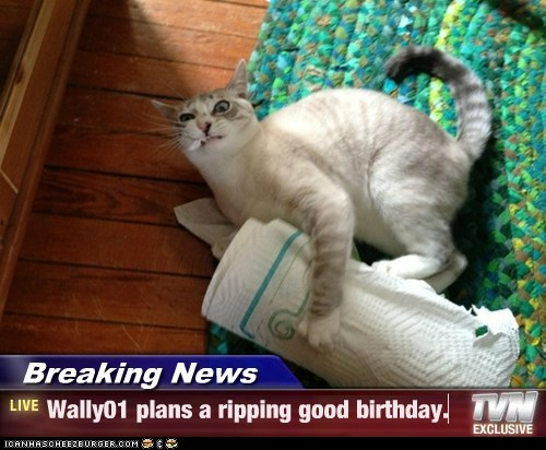 Breaking News - Wally01 plans a ripping good birthday.