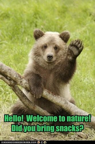 nature baby cute bear snacks - 7553429504
