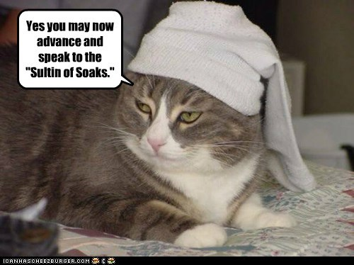"""Yes you may now advance and speak to the """"Sultin of Soaks."""""""
