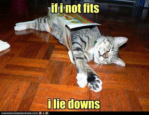 lie down plan b if i fits i sits funny - 7555973120