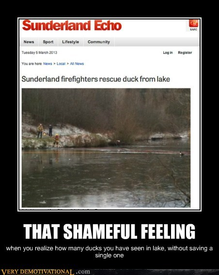 firefighters,ducks,jerks,funny