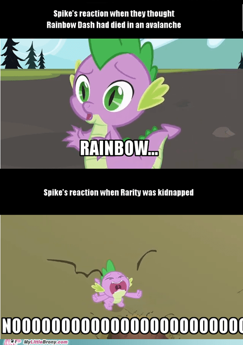 spike noooooo rarity rainbow dash - 7557926144
