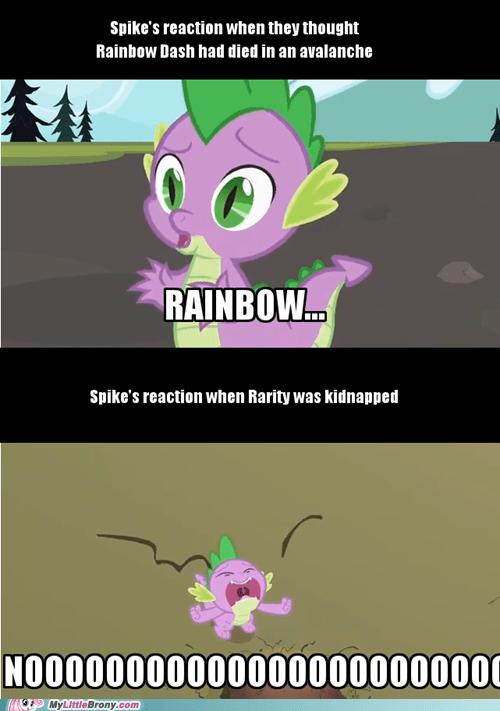 spike noooooo rarity rainbow dash - 7557926144