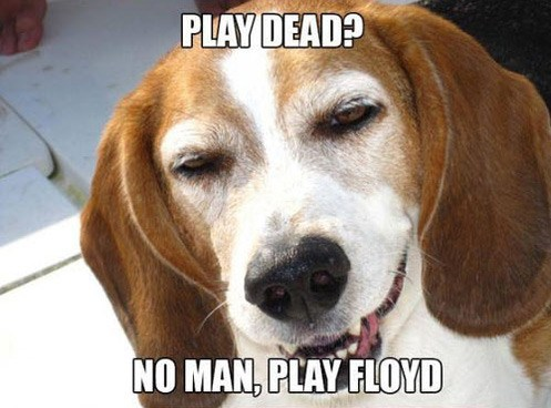 play dead stoner floyd - 7558741760