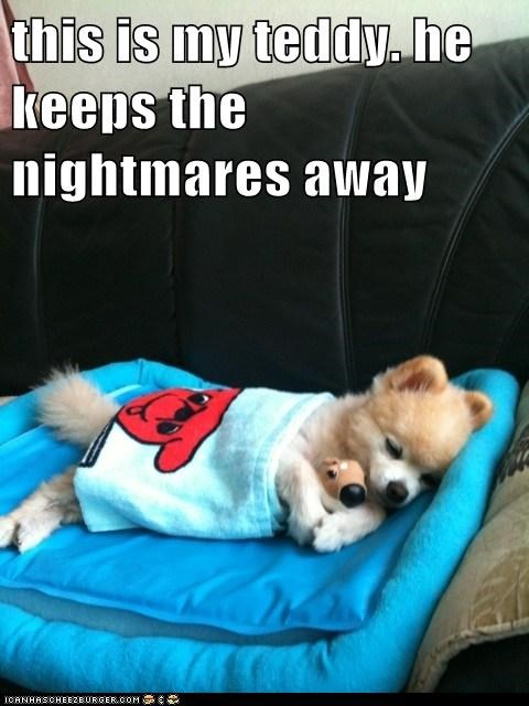 nap cute sleep teddy - 7559507200