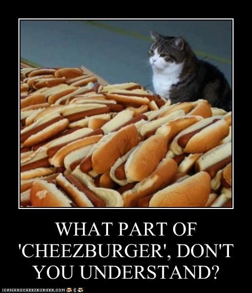 Cheezburger Image 7559577856