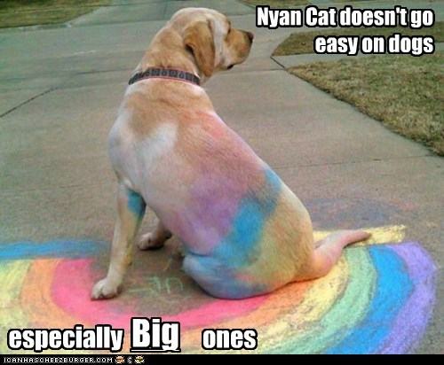 Nyan Cat doesn't go easy on dogs especially ones Big