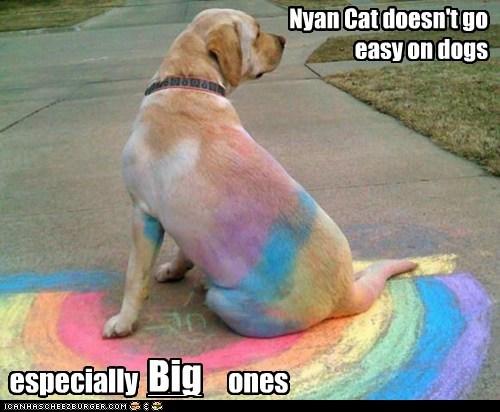 Nyan Cat funny rainbow chalk Nyan Cat funny rainbow chalk - 7559816960