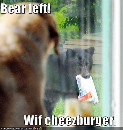 Cheezburger Image 756086016