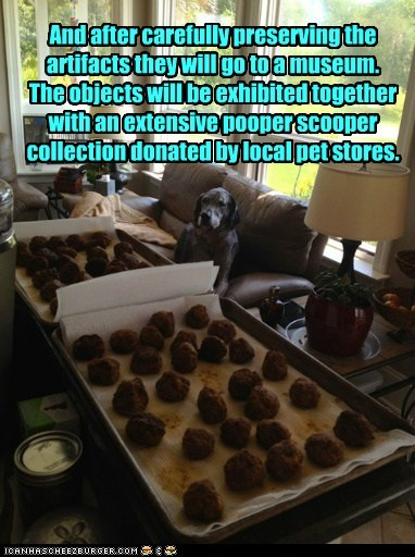 And after carefully preserving the artifacts they will go to a museum. The objects will be exhibited together with an extensive pooper scooper collection donated by local pet stores.
