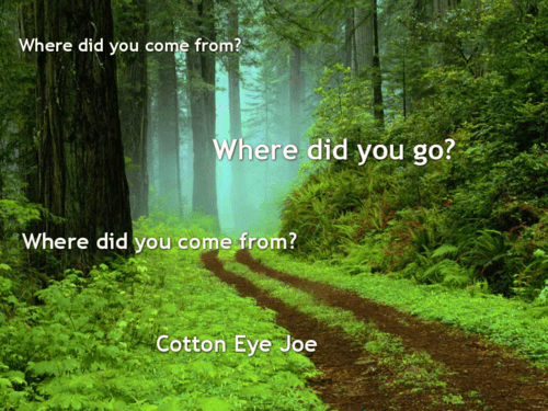 Music,lyrics,cotton eye joe,funny