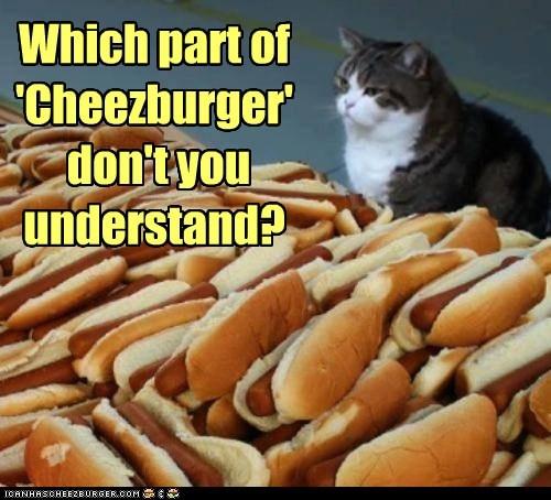 Cheezburger Image 7561360896