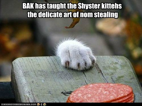 BAK has taught the Shyster kittehs the delicate art of nom stealing