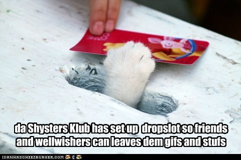 da Shysters Klub has set up dropslot so friends and wellwishers can leaves dem gifs and stufs