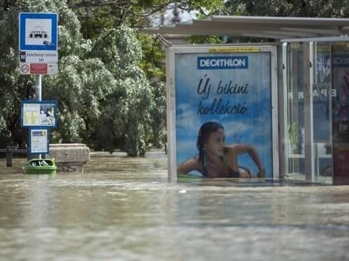 Ad model swimming flood - 7561659648
