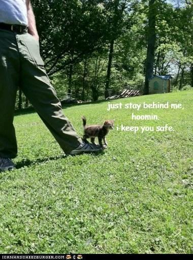 tiny guard kitten funny - 7561785856