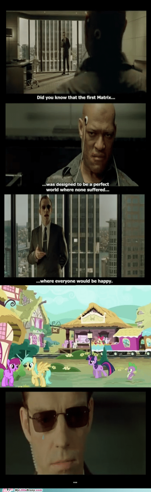 the matrix,Bronies,equestria
