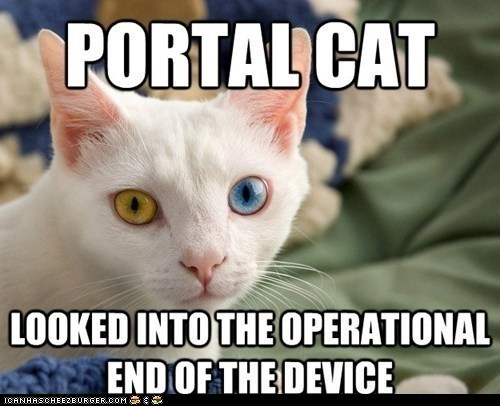 Portal video games funny