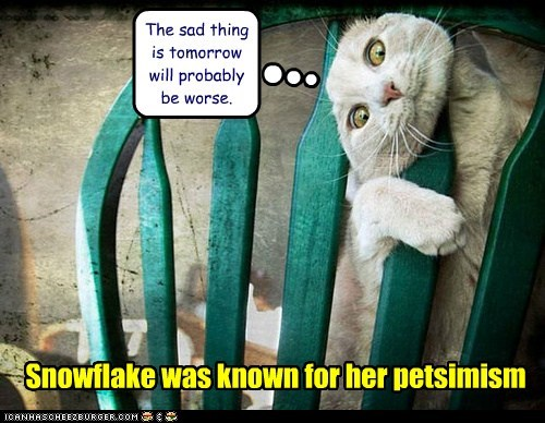 The sad thing is tomorrow will probably be worse. Snowflake was known for her petsimism