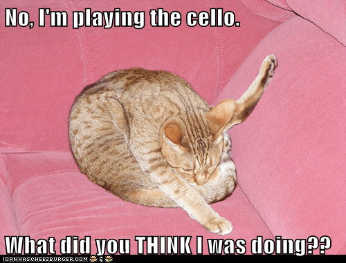 No, I'm playing the cello.  What did you THINK I was doing??