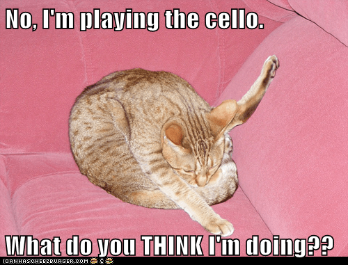 No, I'm playing the cello.  What do you THINK I'm doing??