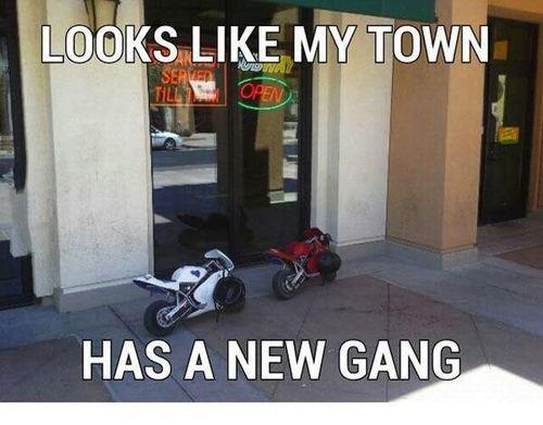 motorcycles,funny,gangs