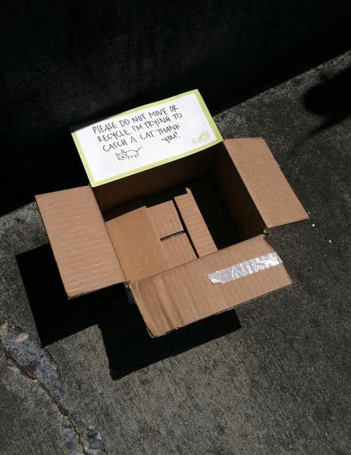 box,trap,funny