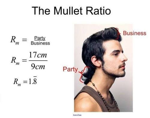 mullet Party business math funny - 7565684736