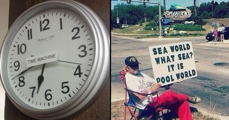 literal jokes like sea world being pool world
