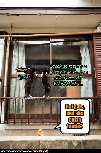 Cheezburger Image 7568404224