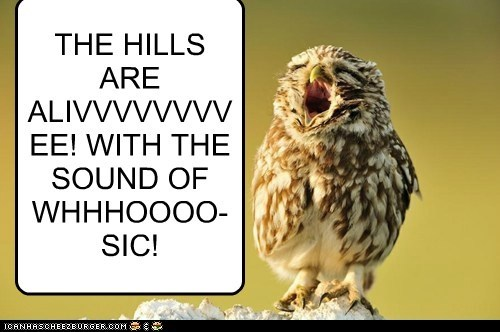 THE HILLS ARE ALIVVVVVVVVEE! WITH THE SOUND OF WHHHOOOO-SIC!