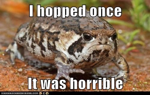 toad,hopping,grumpy,hoped,funny