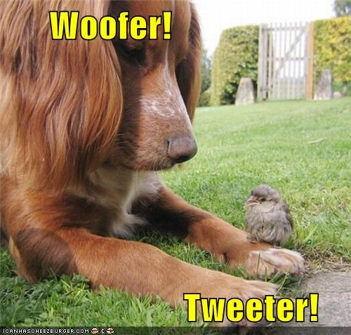 woofer tweeter harmony funny