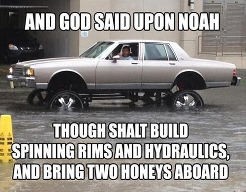 IRL,cars,noahs ark