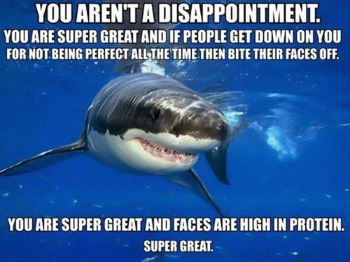 self esteem shark bite funny - 7569106944