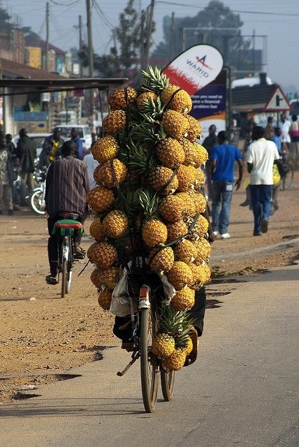 pineapples,wtf,bikes,funny