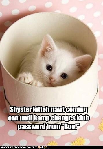 "Shyster kitteh nawt coming owt until kamp changes klub password frum ""Boo!"""