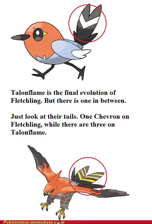 Pokémon talonflame evolution birds fletchling - 7569378048