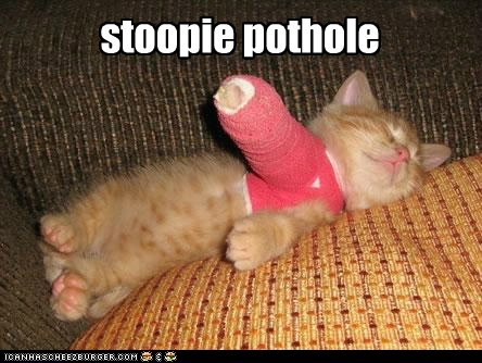 seattle,cast,cute,injured,funny,potholes