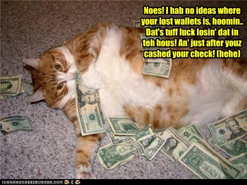 Noes! I hab no ideas where your lost wallets is, hoomin.. Dat's tuff luck losin' dat in teh hous! An' just after youz cashed your check! (hehe)