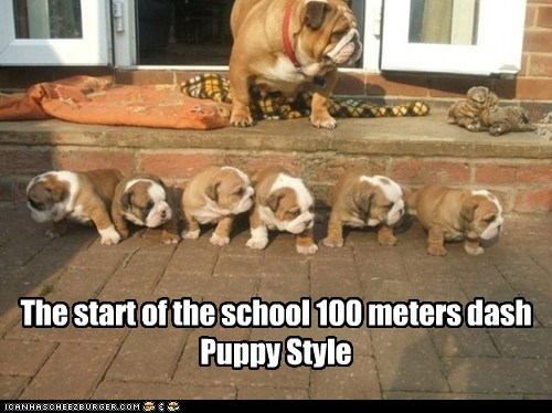 The start of the school 100 meters dash Puppy Style