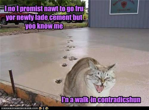cement,contradictions,funny