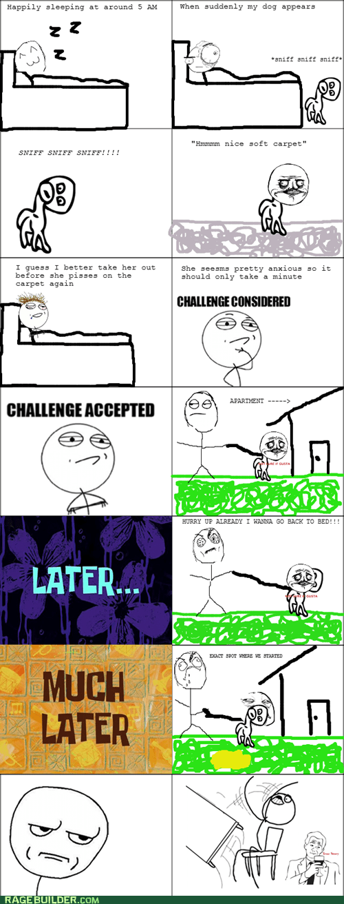 dogs,Challenge Accepted,morning,challenge considered