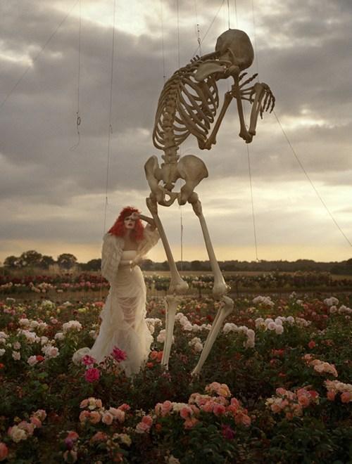 wtf skeletons funny - 7572093184