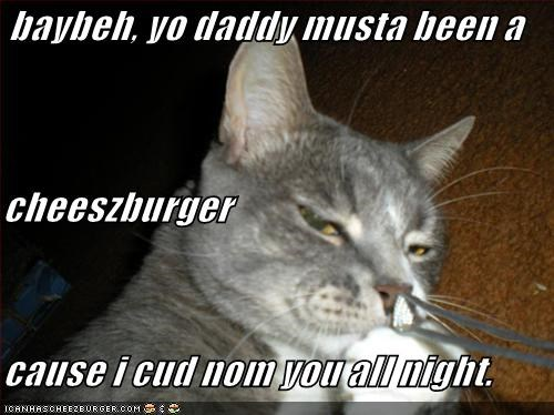 Cheezburger Image 757276928