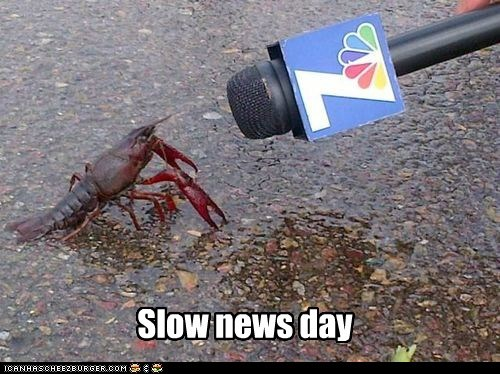 news,slow,funny,exclusive
